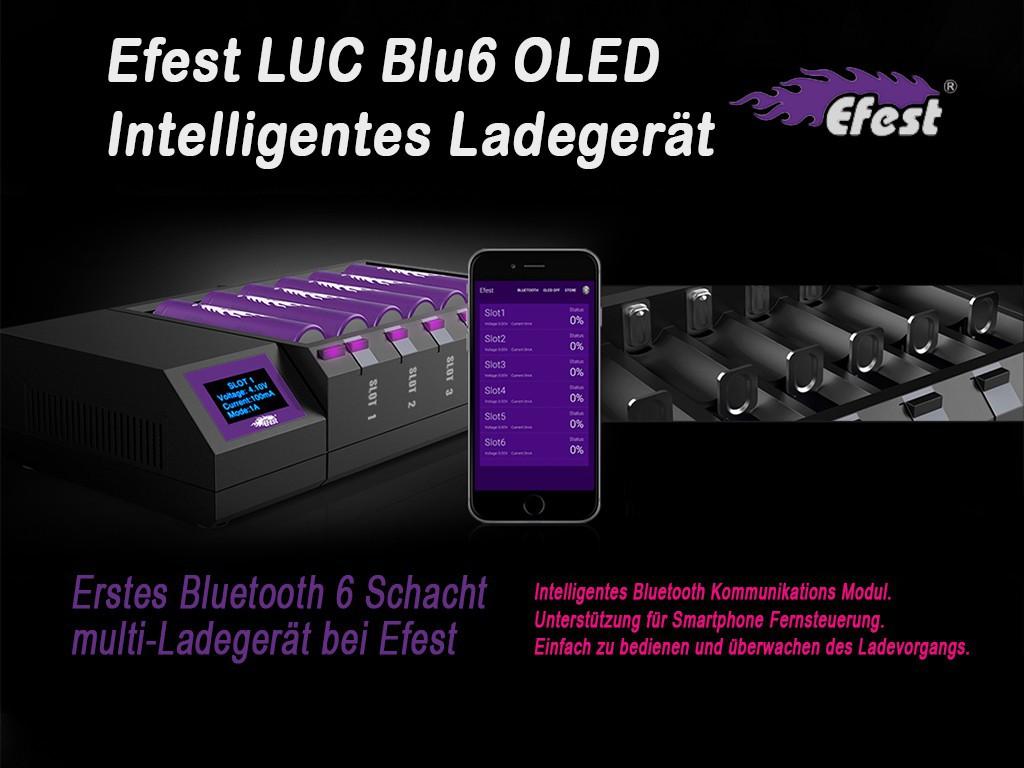 new efest luc blu6 intelligentes ladeger t f r li ionen. Black Bedroom Furniture Sets. Home Design Ideas